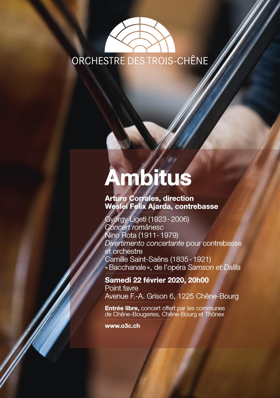 Flyer Ambitus